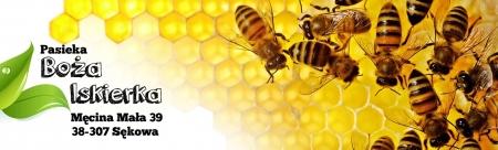 Fascynujący świat pszczół- spotkanie z mistrzem pszczelarskim