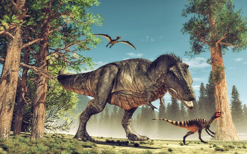Dinozaury w przedszkolu