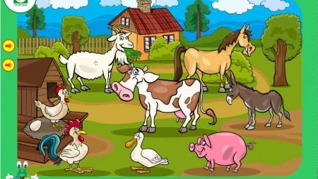 Śpiewamy ze zwierzętami